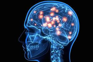 brain_health2