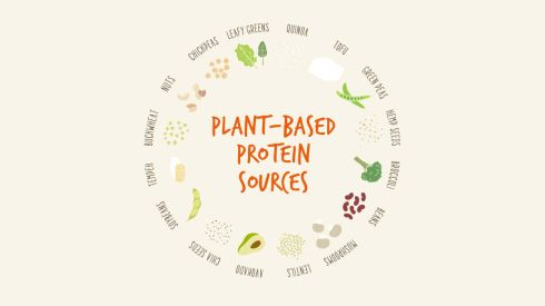 heather-email-1-protein-sources